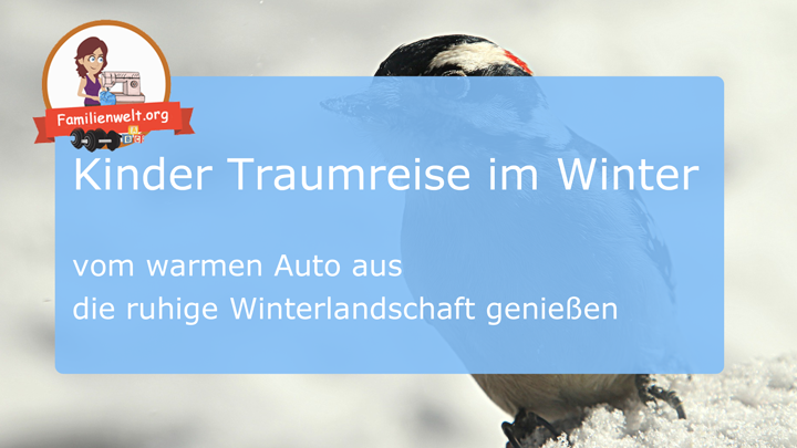 Kinder Traumreise Winterlandschaft